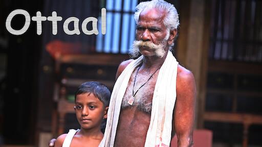 mili malayalam full movie hd free download